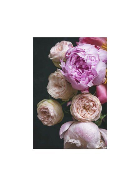 Moody Florals II
